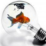 Encouraging Entrepreneurship