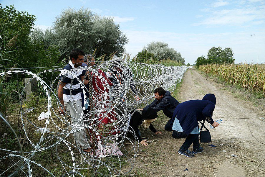 Migrants_in_Hungary_2015_Aug_018